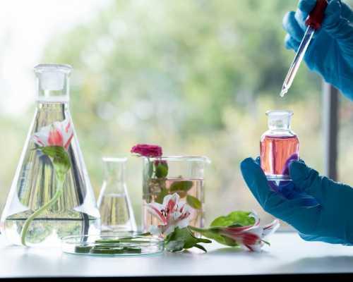 Perfumery Manufacturer